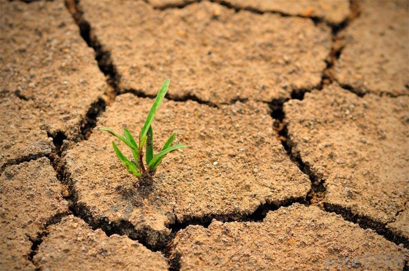 تغيرات مناخية في الوطن العربي و لا من يحرك ساكناً