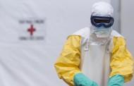 الصحة العالمية تُعلن غينيا خالية من وباء إيبولا