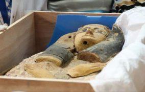 مصر تُعلن عن اكتشاف تمثالين ملكيين عمرهما نحو 3300 عام
